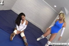 SKW-HIGHLIGHTS-volume-34---vixen-sumiko-(29)